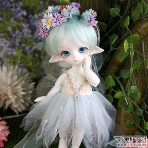Tiny Delf Full Set - F