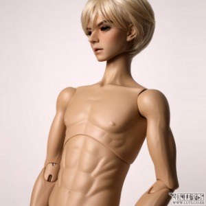 Super Senior Delf Body BOY New Type