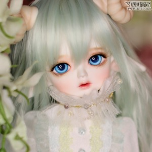 Honey31 Delf PRING Elf ver. Head Limited